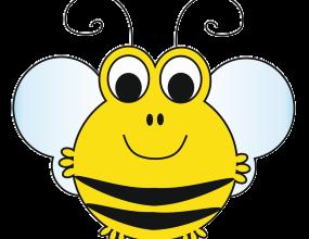 Promyki-Pszczółka
